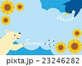 シロクマとペンギンの暑中見舞いイラスト(2) 23246282