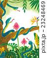 暑中見舞い カード 熱帯植物とハブ 南国 23248469
