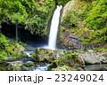 浄蓮の滝 23249024