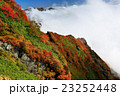 雲湧く谷川連峰・一ノ倉岳の稜線 23252448