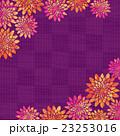 菊 花柄 市松模様のイラスト 23253016