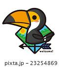 風見鶏 鳥 オオハシのイラスト 23254869