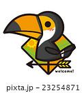 風見鶏 鳥 オオハシのイラスト 23254871