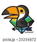 風見鶏 鳥 オオハシのイラスト 23254872