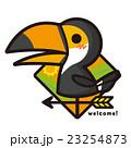 風見鶏 鳥 オオハシのイラスト 23254873