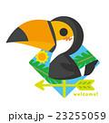 風見鶏 鳥 オオハシのイラスト 23255059