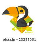 風見鶏 鳥 オオハシのイラスト 23255061