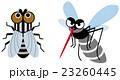 ハエと蚊 23260445