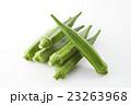 オクラ 23263968