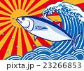 カツオ 魚 大漁のイラスト 23266853