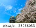大村公園 桜 空の写真 23268033