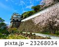 大村公園 桜 空の写真 23268034