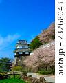 大村公園 桜 玖島城跡の写真 23268043