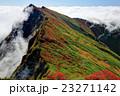 紅葉 秋 谷川岳の写真 23271142