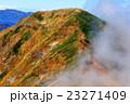 谷川連峰・一ノ倉岳から見る雲湧く茂倉岳 23271409