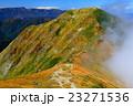 谷川連峰・一ノ倉岳から見る雲湧く茂倉岳 23271536