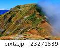 谷川連峰・一ノ倉岳から見る雲湧く茂倉岳 23271539