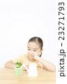 植物を世話する女の子 植物を育てる 女の子 小学生 23271793