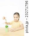 植物を世話する女の子 植物を育てる 女の子 小学生 23271796