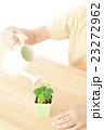 植物を世話する女の子 植物を育てる パーツカット ボディパーツ ボディーパーツ 23272962