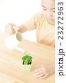 植物を世話する女の子 植物を育てる パーツカット ボディパーツ ボディーパーツ 23272963