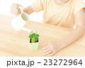 植物を世話する女の子 植物を育てる パーツカット ボディパーツ ボディーパーツ 23272964