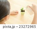 植物を世話する女の子 植物を育てる パーツカット ボディパーツ ボディーパーツ 23272965
