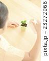 植物を世話する女の子 植物を育てる パーツカット ボディパーツ ボディーパーツ 23272966