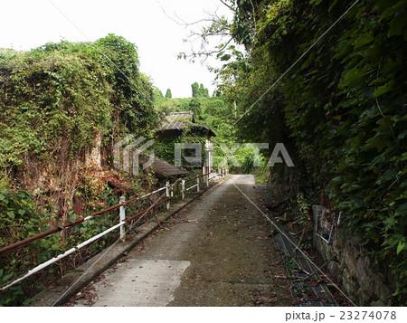 緑に覆われた廃村 23274078