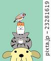 頭の上に積み重なるペットたち 23281619