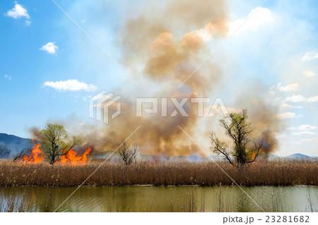 西の湖のヨシ焼き(滋賀県近江八幡市) 23281682