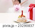 誕生日 バースデー (赤ちゃん ケーキ プレゼント ベビー パーティー 乳児 女の子 1歳 1才) 23290837