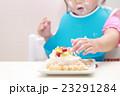 誕生日 バースデー (赤ちゃん ケーキ 手掴み ベビー パーティー 乳児 女の子 1才 1歳) 23291284