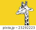 きりん【動物・シリーズ】 23292223
