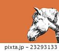 馬【動物・シリーズ】 23293133