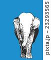 象【動物・シリーズ】 23293565