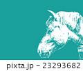 馬【動物・シリーズ】 23293682