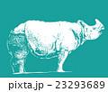 サイ【動物・シリーズ】 23293689