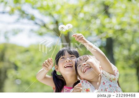 新緑の公園でタンポポを持つ姉妹 23299468
