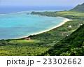 沖縄ブルー 23302662
