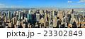 New York City 23302849