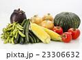 野菜集合 23306632