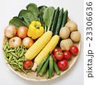 野菜集合 23306636