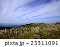 葛城山のススキ 23311091