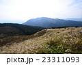 葛城山のススキ 23311093