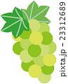 果物 フルーツ ぶどうのイラスト 23312689
