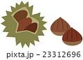栗 イガグリ ベクターのイラスト 23312696