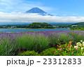 富士山 ラベンダー 23312833