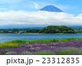 富士山 ラベンダー 23312835