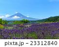 富士山 ラベンダー 23312840